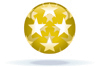 Gold Star Transparency Award